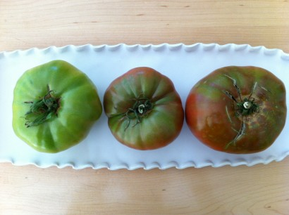 heirloom tomato ripening
