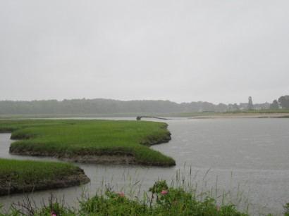 mainemarsh