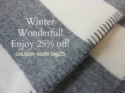 winterwonderful25off