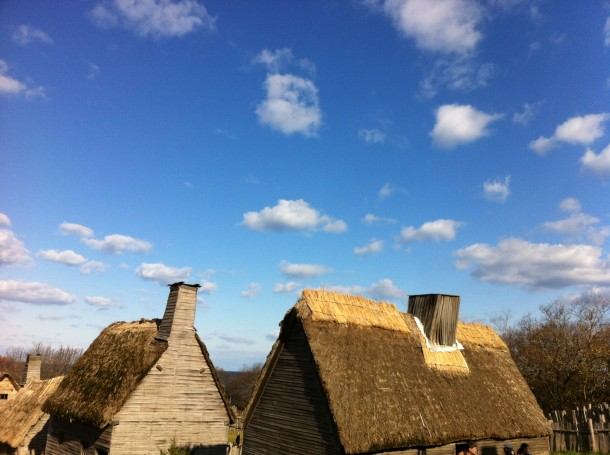 thatchedroofs1