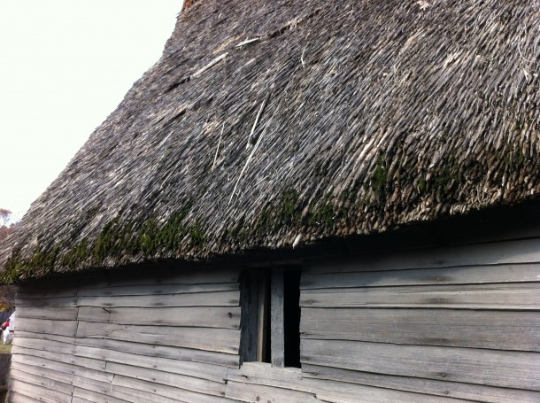 thatchedroofs2
