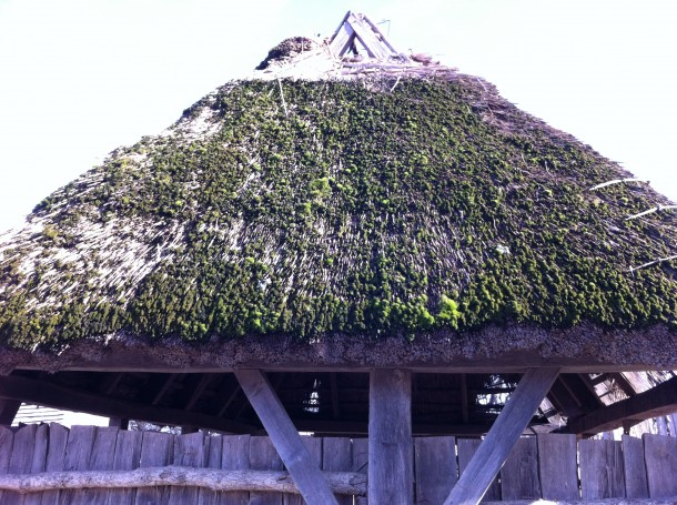 thatchedroofs3