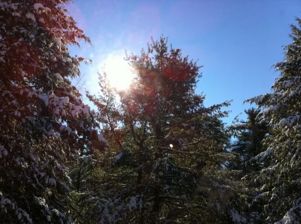 wintersun1